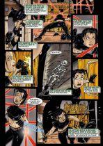 Alina Fox - Thief Extraordinaire # 01 / Biien der Schatten # 01