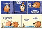Bär liebt Katze # 01