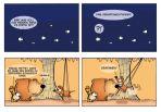 Bär liebt Katze # 02