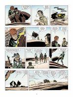 Wüstenskorpione # 01 (farbig)
