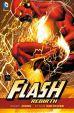 Flash - Rebirth
