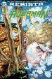 Aquaman (Serie ab 2017, Rebirth) # 01 - Der Untergang - Variant-Cover